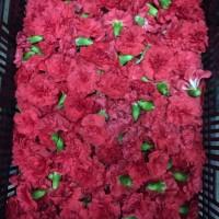 Λουλουδια Χονδρικης - γαρυφαλλα κεφαλια κοκκινα
