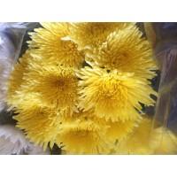Λουλουδια Χονδρικης - anastasia kefalata
