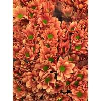 Λουλουδια Χονδρικης - χρυσανθεμα πορτοκαλι