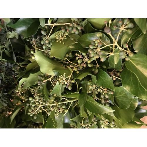 Λουλουδια Χονδρικης - Πρασιναδα - prasinades kissos