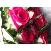 Τριανταφυλλα - triantafilla bluez