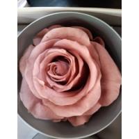 Τριανταφυλλα - τριαντάφυλλα preserved cherry blossom