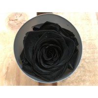 Τριανταφυλλα - τριαντάφυλλα preserved black