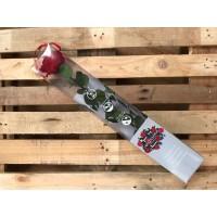 Τριανταφυλλα - τριαντάφυλλα preserved