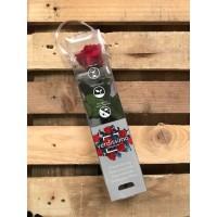 Τριανταφυλλα - τριαντάφυλλα preserved mini amorosa red