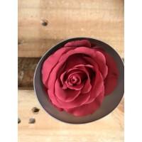 Τριανταφυλλα - τριαντάφυλλα preserved cranberry