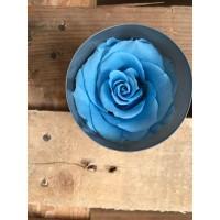 Τριανταφυλλα - τριαντάφυλλα preserved sky blue