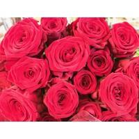Τριανταφυλλα - triantafilla red naomi