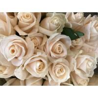 Τριανταφυλλα - τριανταφυλλα vedella
