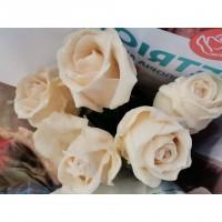 Τριανταφυλλα - triantafilla wax λευκό