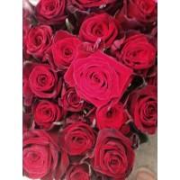 Τριανταφυλλα - triantafilla kokkina grand amore