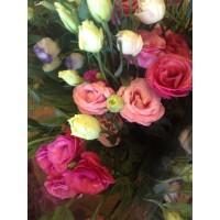 Λουλουδια Χονδρικης - λυσιανθοι φουξια