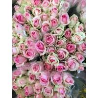 Τριανταφυλλα - triantafilla avalanche sorbet